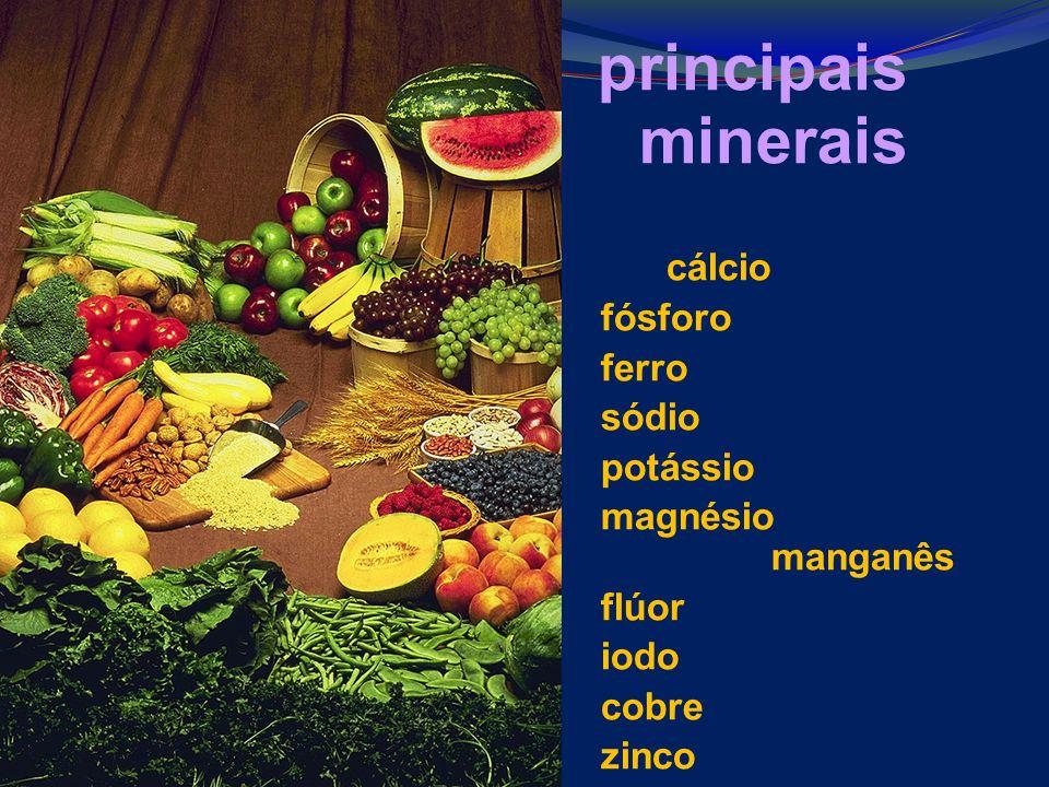 principais minerais cálcio fósforo ferro sódio potássio