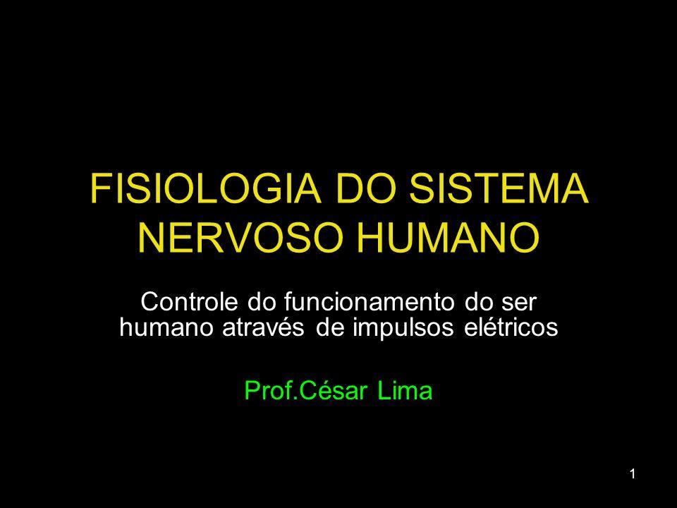 FISIOLOGIA DO SISTEMA NERVOSO HUMANO