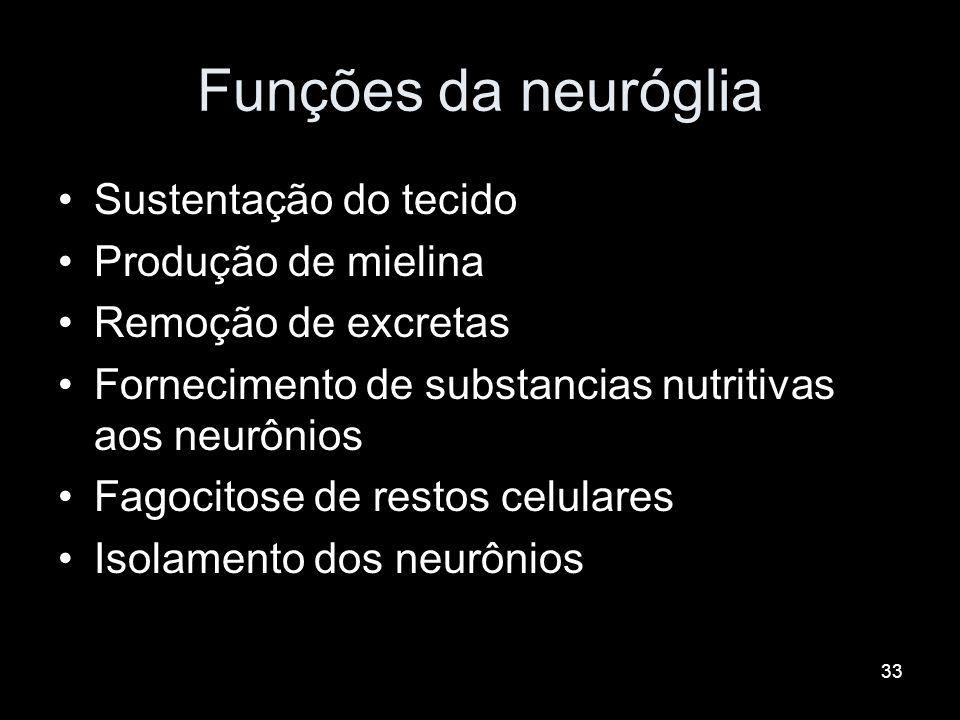 Funções da neuróglia Sustentação do tecido Produção de mielina