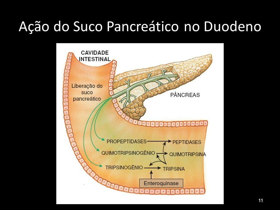 Ação do Suco Pancreático no Duodeno