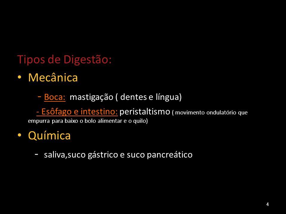 - Boca: mastigação ( dentes e língua)