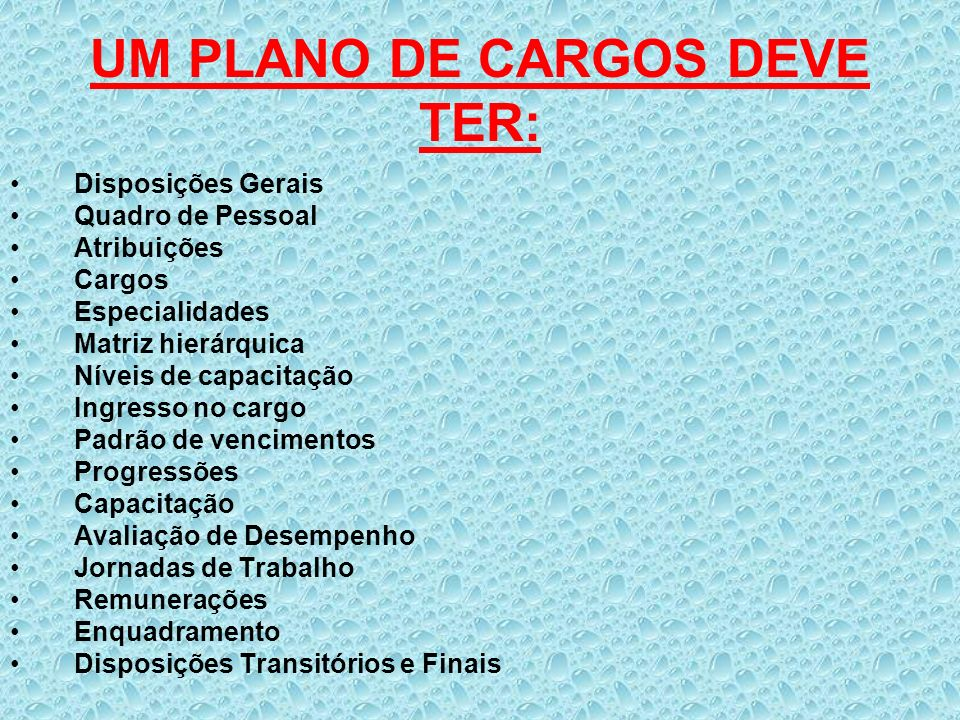 UM PLANO DE CARGOS DEVE TER:
