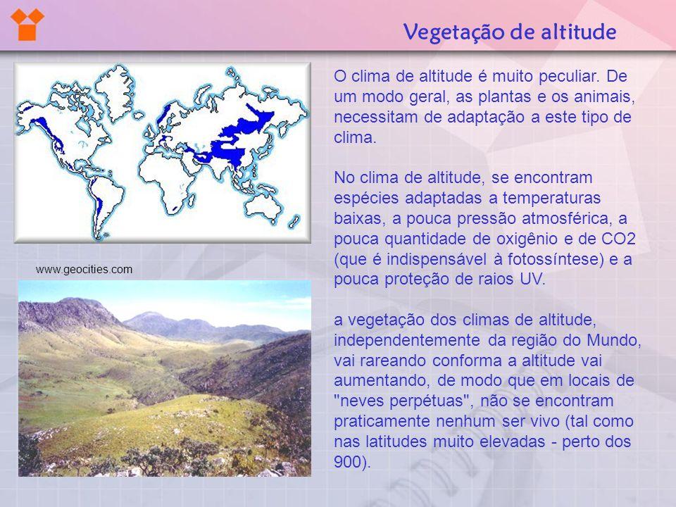 Vegetação de altitude O clima de altitude é muito peculiar. De um modo geral, as plantas e os animais, necessitam de adaptação a este tipo de clima.