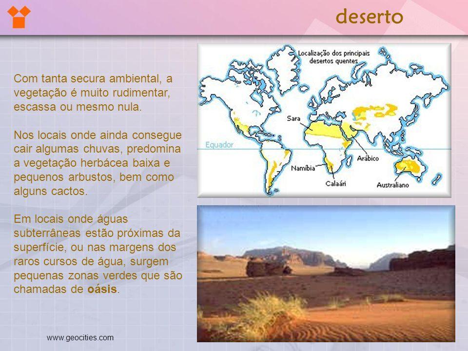 deserto Com tanta secura ambiental, a vegetação é muito rudimentar, escassa ou mesmo nula.