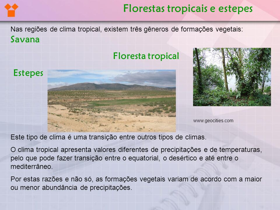 Florestas tropicais e estepes