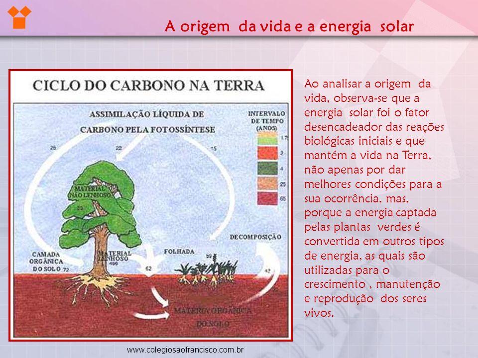 A origem da vida e a energia solar