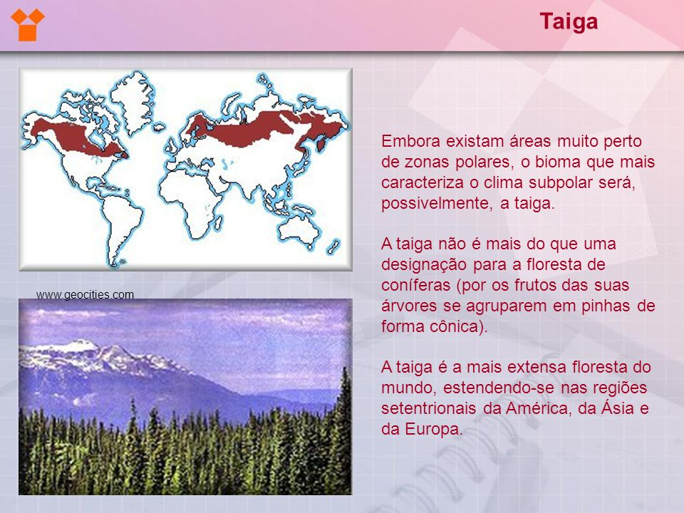 Taiga Embora existam áreas muito perto de zonas polares, o bioma que mais caracteriza o clima subpolar será, possivelmente, a taiga.