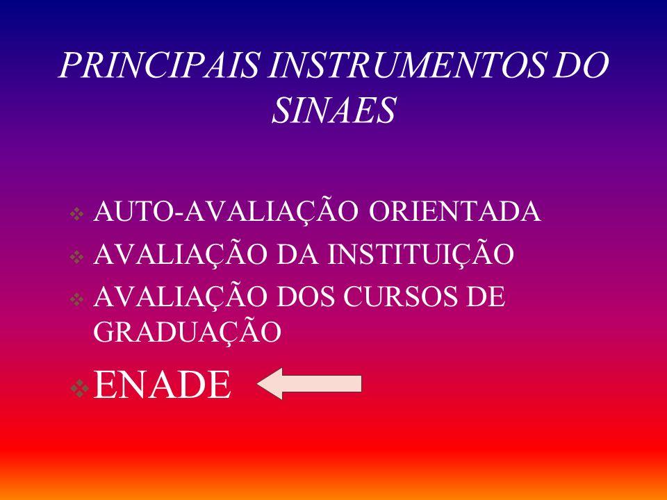 PRINCIPAIS INSTRUMENTOS DO SINAES
