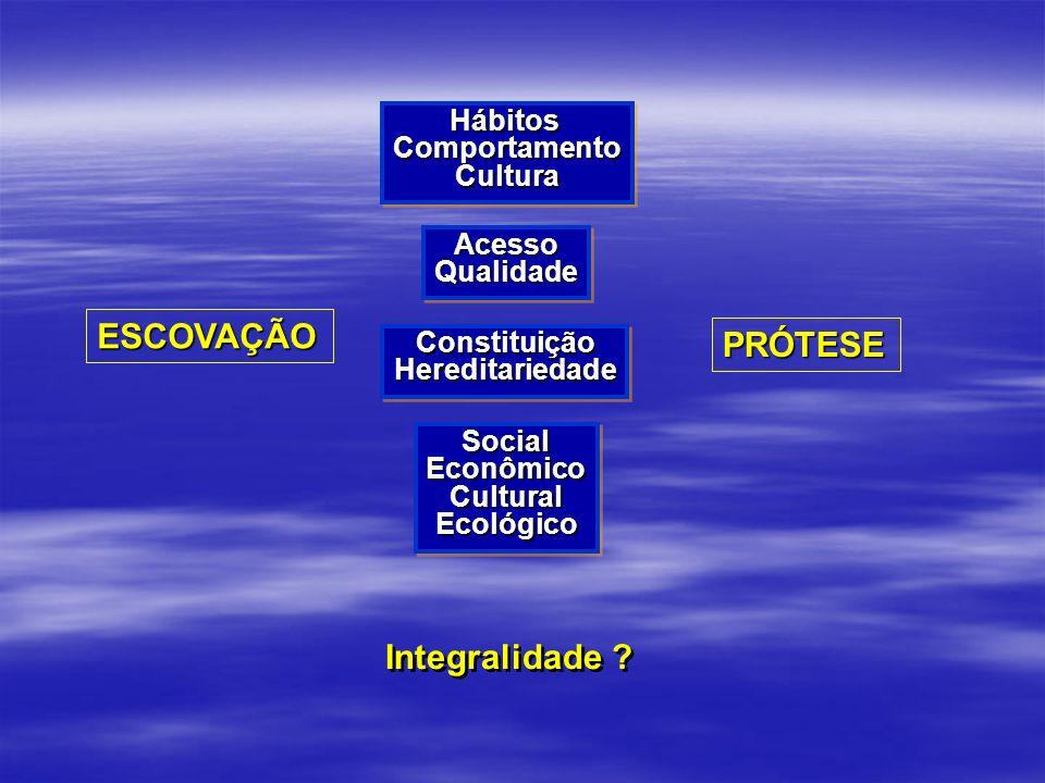 ESCOVAÇÃO PRÓTESE Integralidade Hábitos Comportamento Cultura Acesso