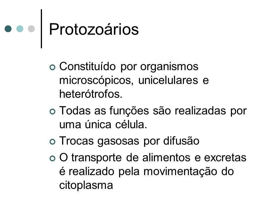 Protozoários Constituído por organismos microscópicos, unicelulares e heterótrofos. Todas as funções são realizadas por uma única célula.