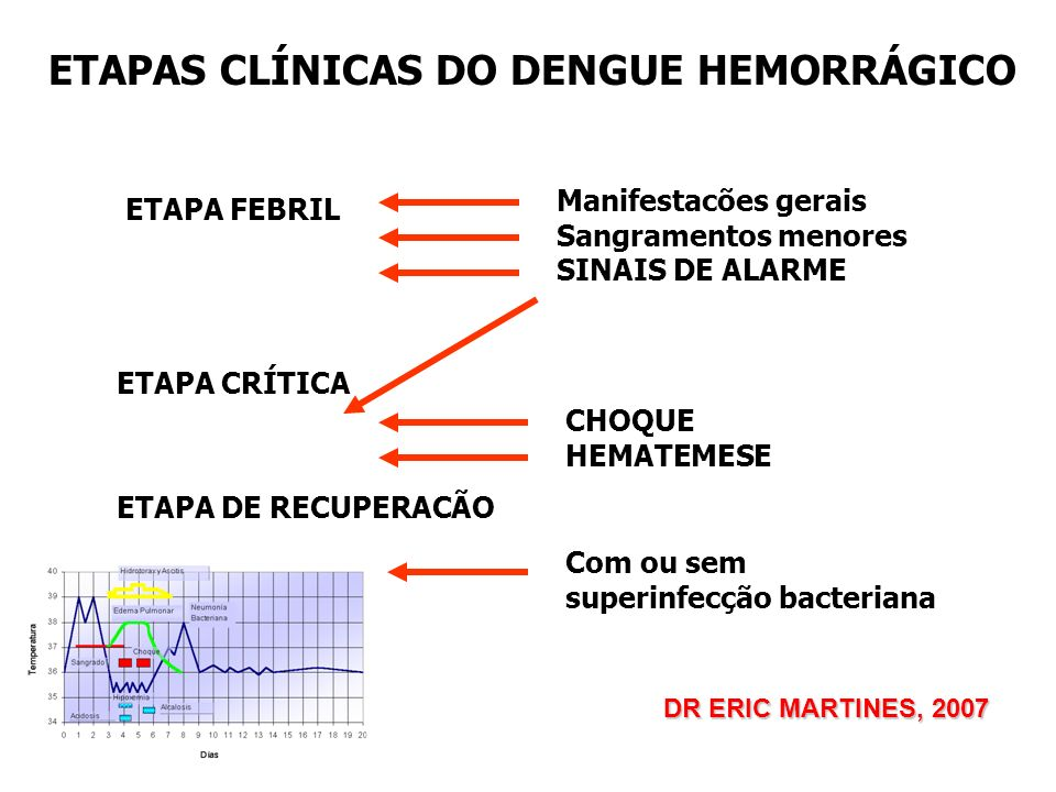 ETAPAS CLÍNICAS DO DENGUE HEMORRÁGICO