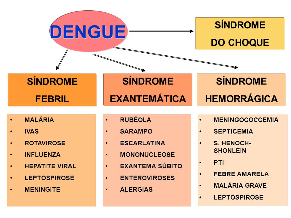 DENGUE SÍNDROME DO CHOQUE SÍNDROME FEBRIL SÍNDROME EXANTEMÁTICA