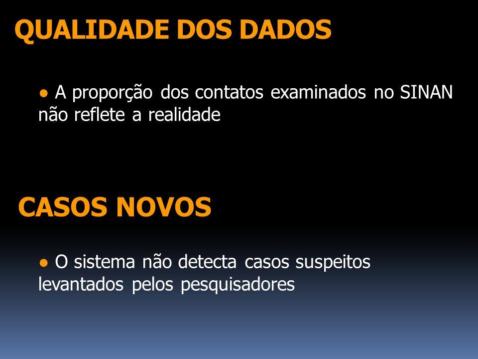 QUALIDADE DOS DADOS CASOS NOVOS