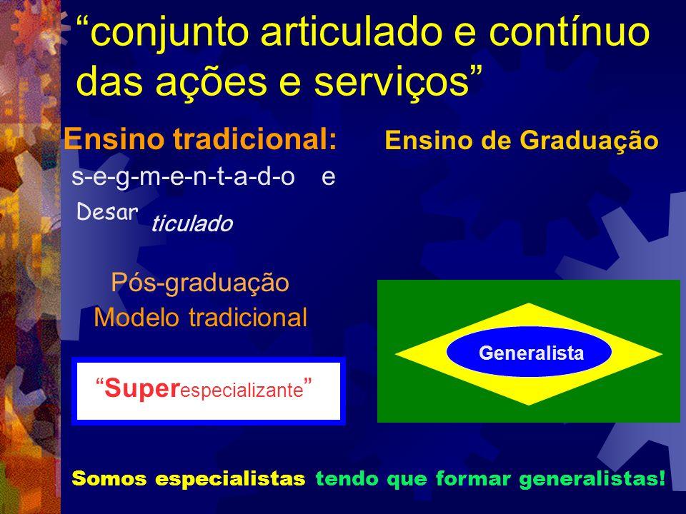 conjunto articulado e contínuo das ações e serviços