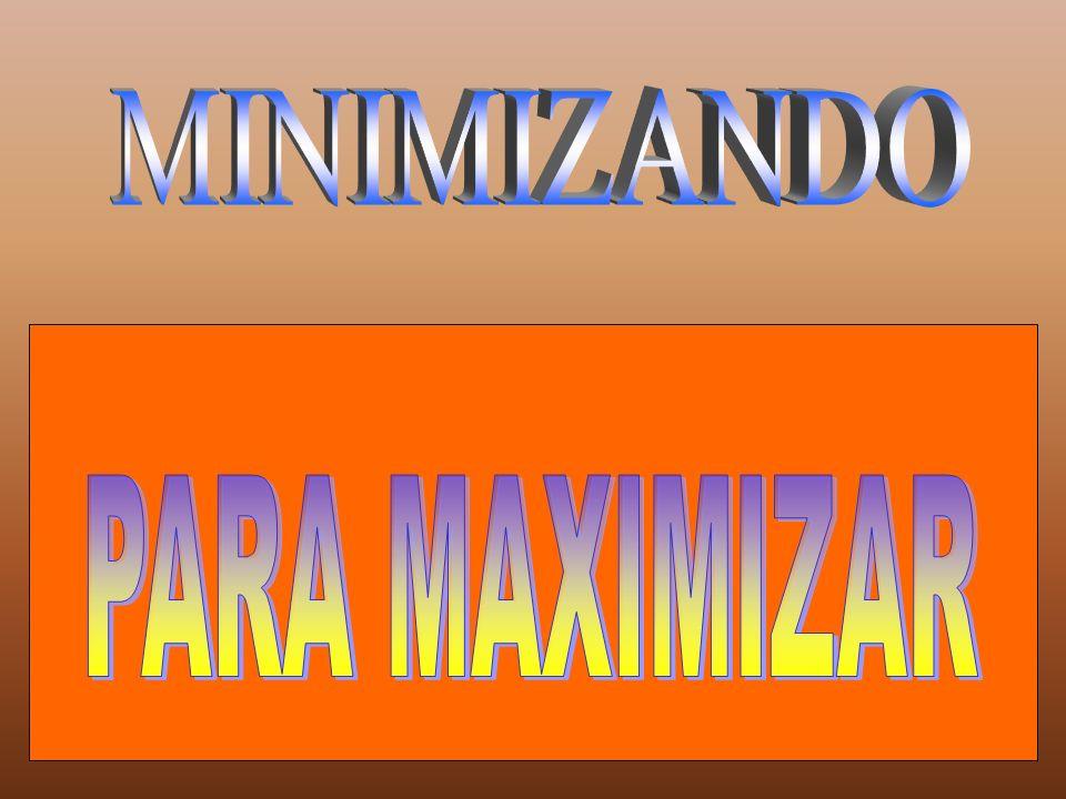 MINIMIZANDO PARA MAXIMIZAR