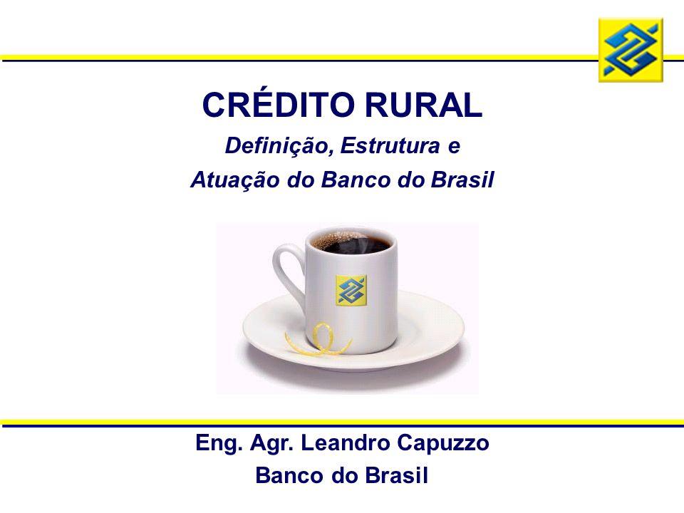 Atuação do Banco do Brasil Eng. Agr. Leandro Capuzzo