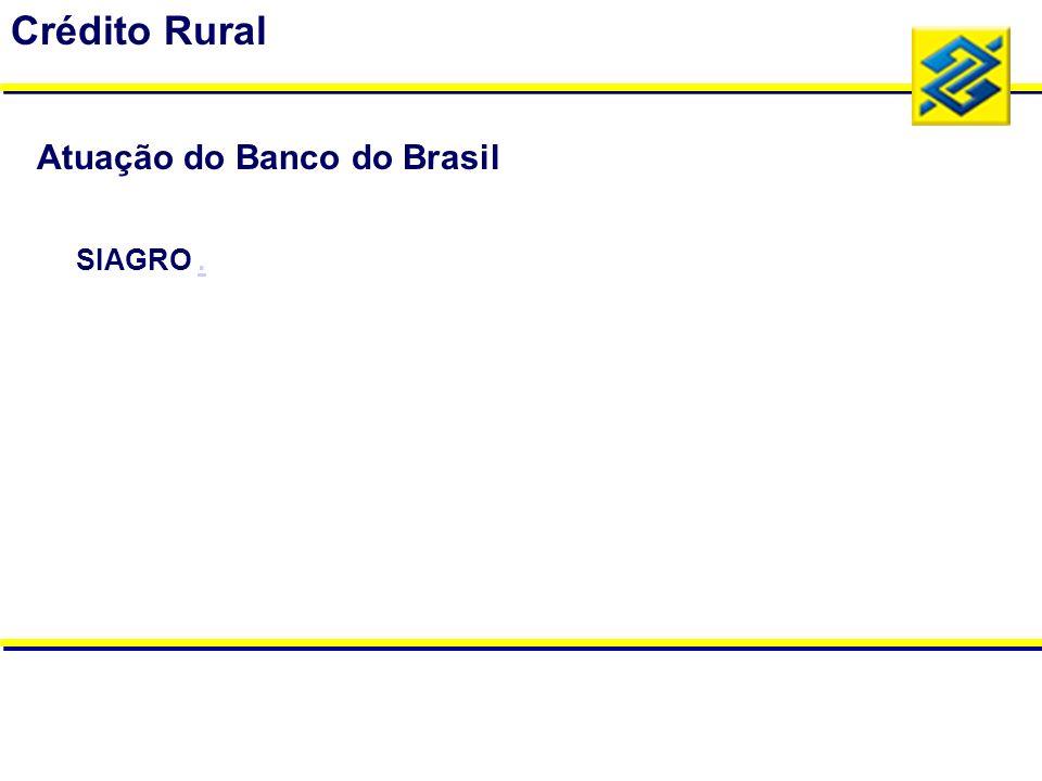 Crédito Rural Atuação do Banco do Brasil SIAGRO .