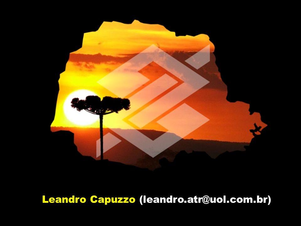 Leandro Capuzzo (leandro.atr@uol.com.br)