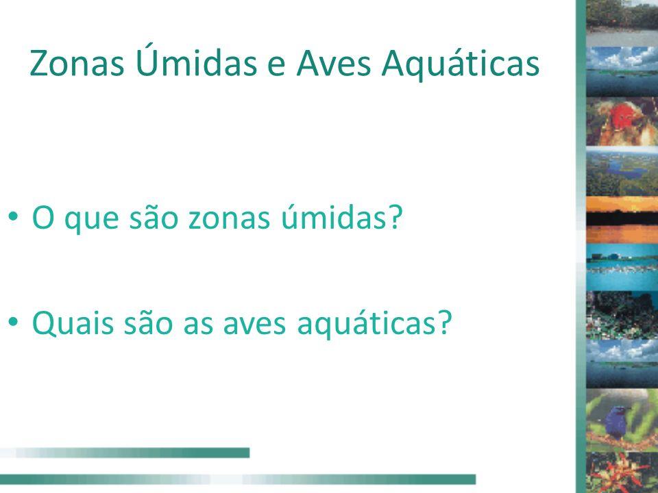 Zonas Úmidas e Aves Aquáticas