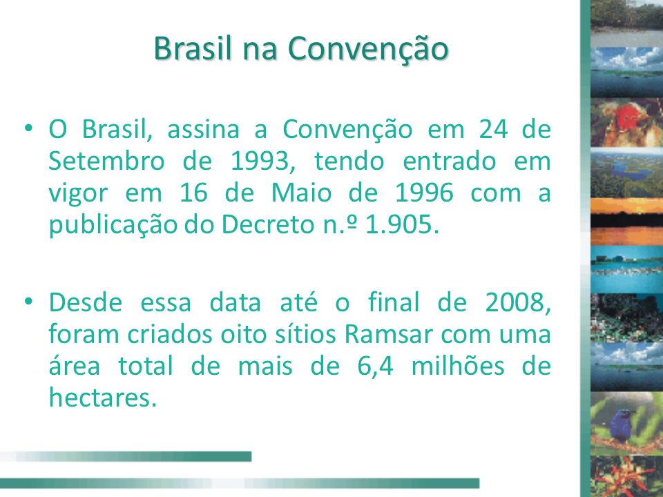 Brasil na Convenção