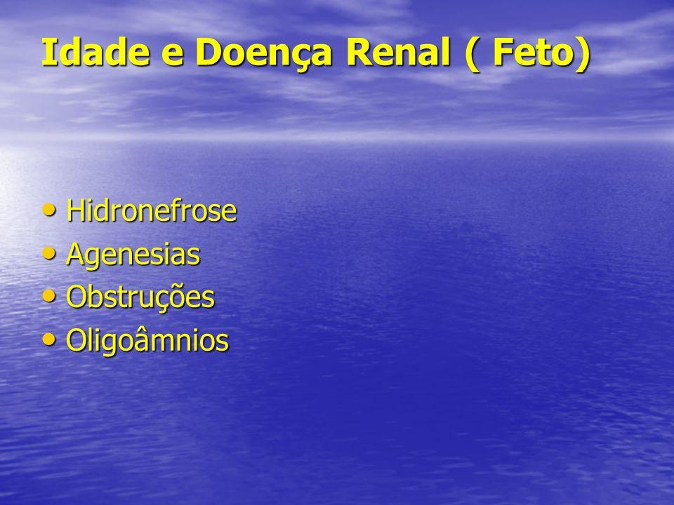 Idade e Doença Renal ( Feto)