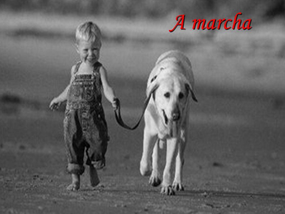 A marcha O engatinhar Marcha