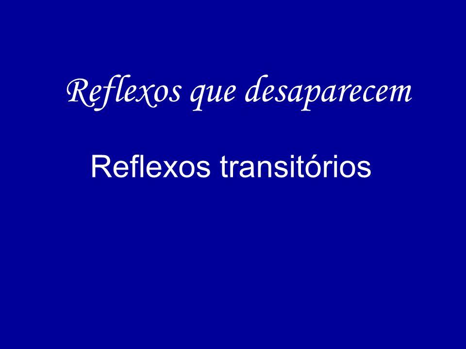 Reflexos que desaparecem