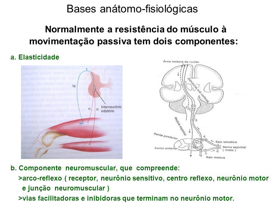 Bases anátomo-fisiológicas