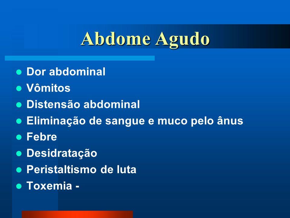Abdome Agudo Dor abdominal Vômitos Distensão abdominal