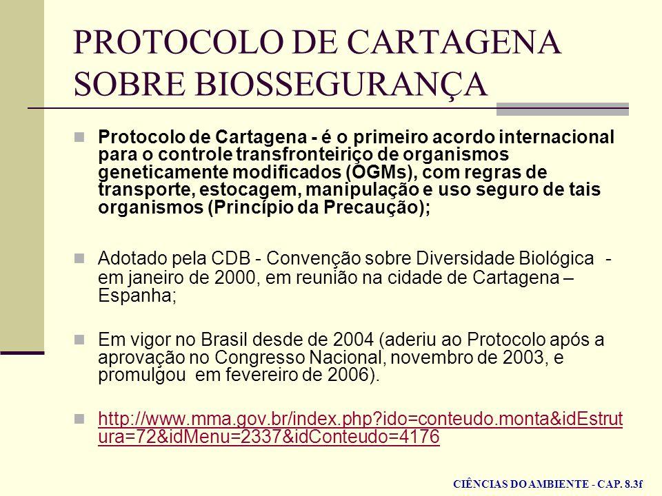 PROTOCOLO DE CARTAGENA SOBRE BIOSSEGURANÇA
