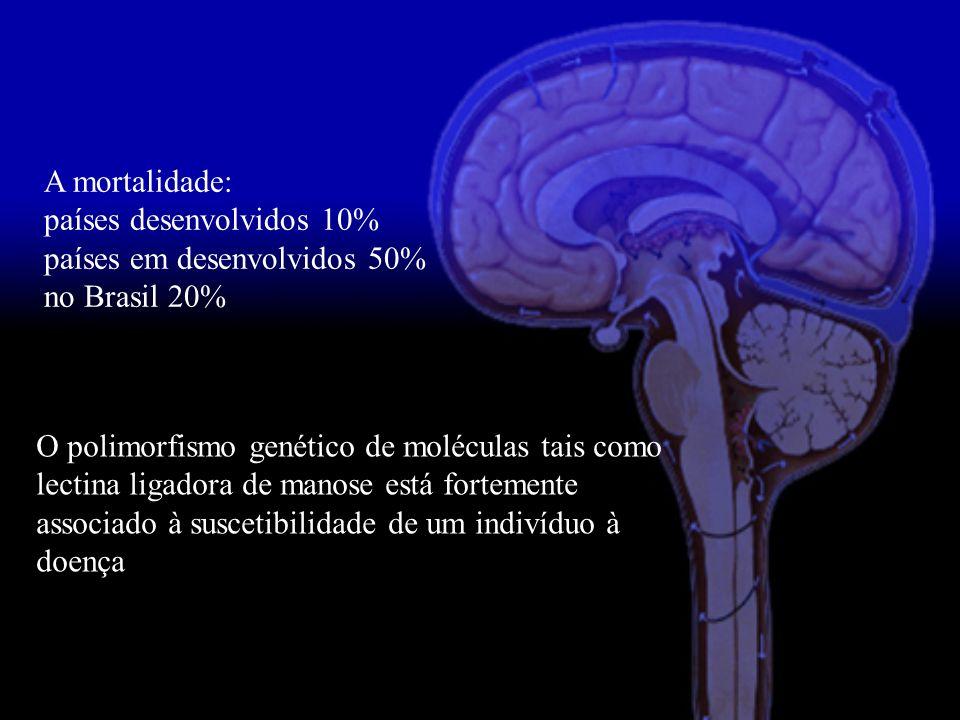 A mortalidade: países desenvolvidos 10% países em desenvolvidos 50% no Brasil 20%