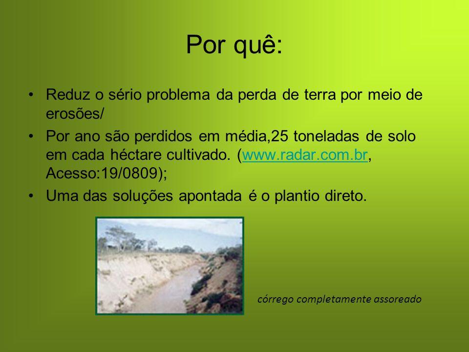 Por quê: Reduz o sério problema da perda de terra por meio de erosões/