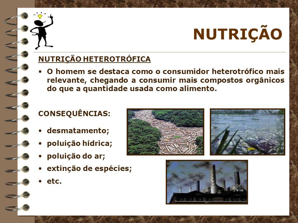 NUTRIÇÃO NUTRIÇÃO HETEROTRÓFICA