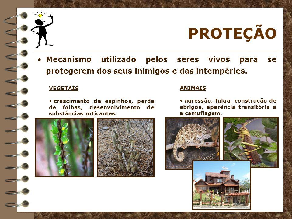 PROTEÇÃOMecanismo utilizado pelos seres vivos para se protegerem dos seus inimigos e das intempéries.