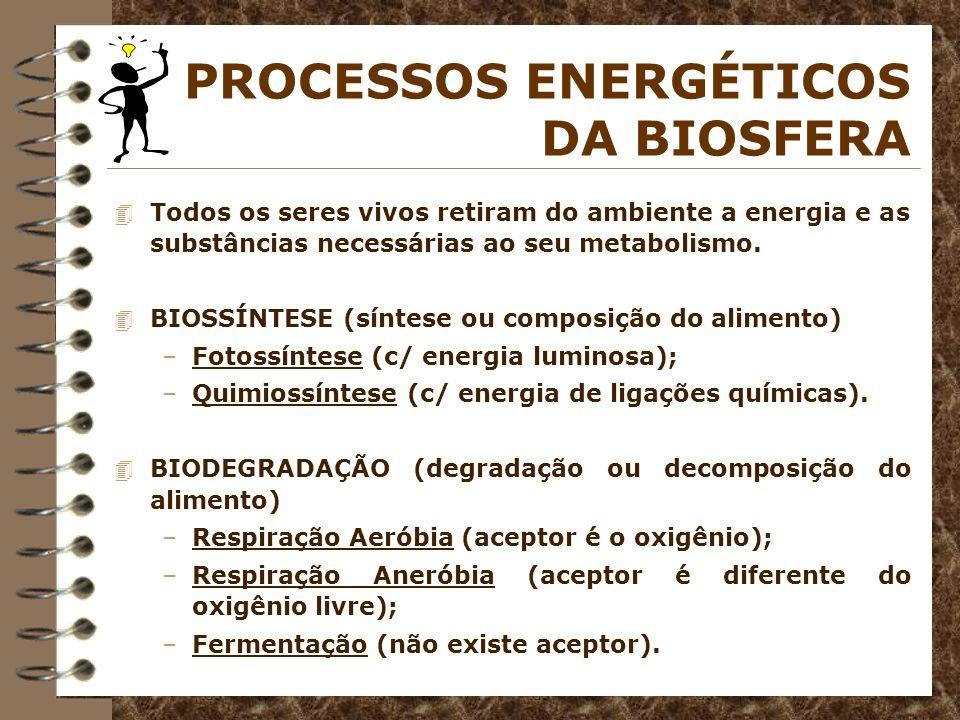 PROCESSOS ENERGÉTICOS DA BIOSFERA