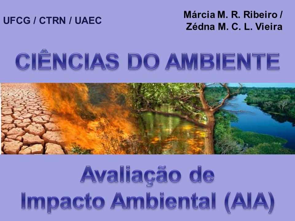 Impacto Ambiental (AIA)
