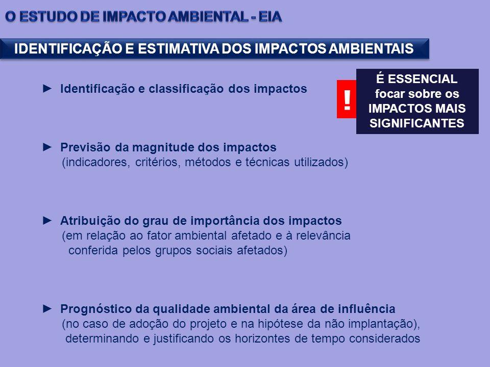 IDENTIFICAÇÃO E ESTIMATIVA DOS IMPACTOS AMBIENTAIS