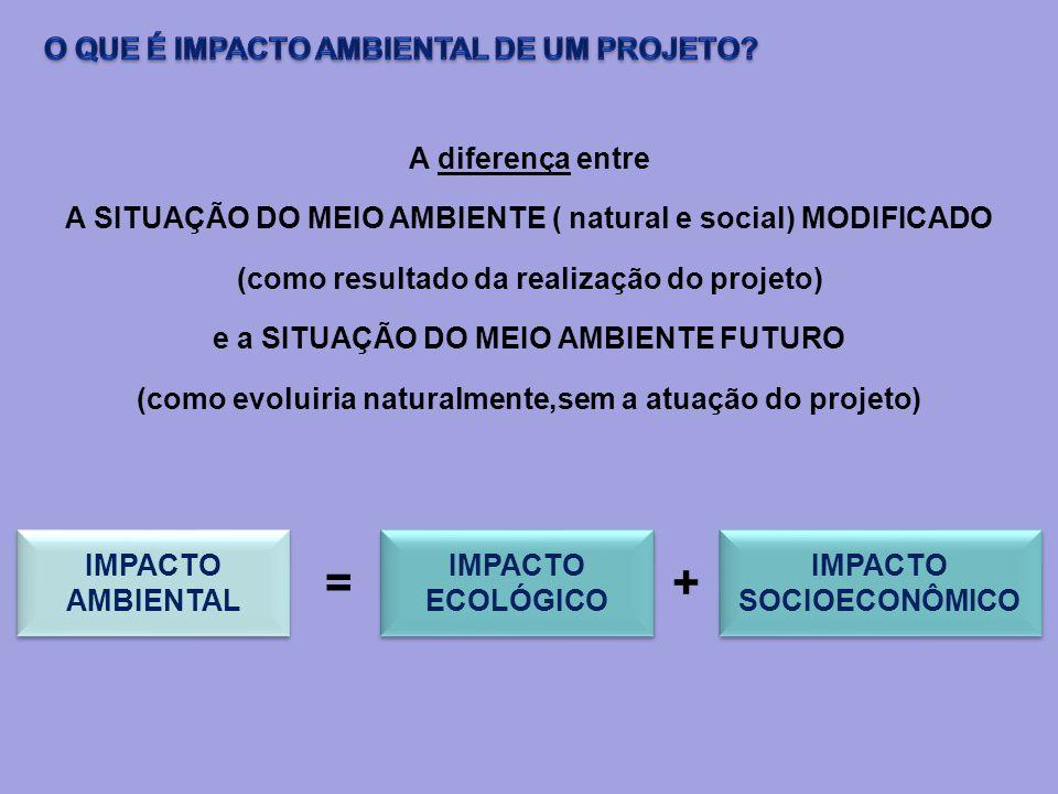 = + O QUE É IMPACTO AMBIENTAL DE UM PROJETO A diferença entre