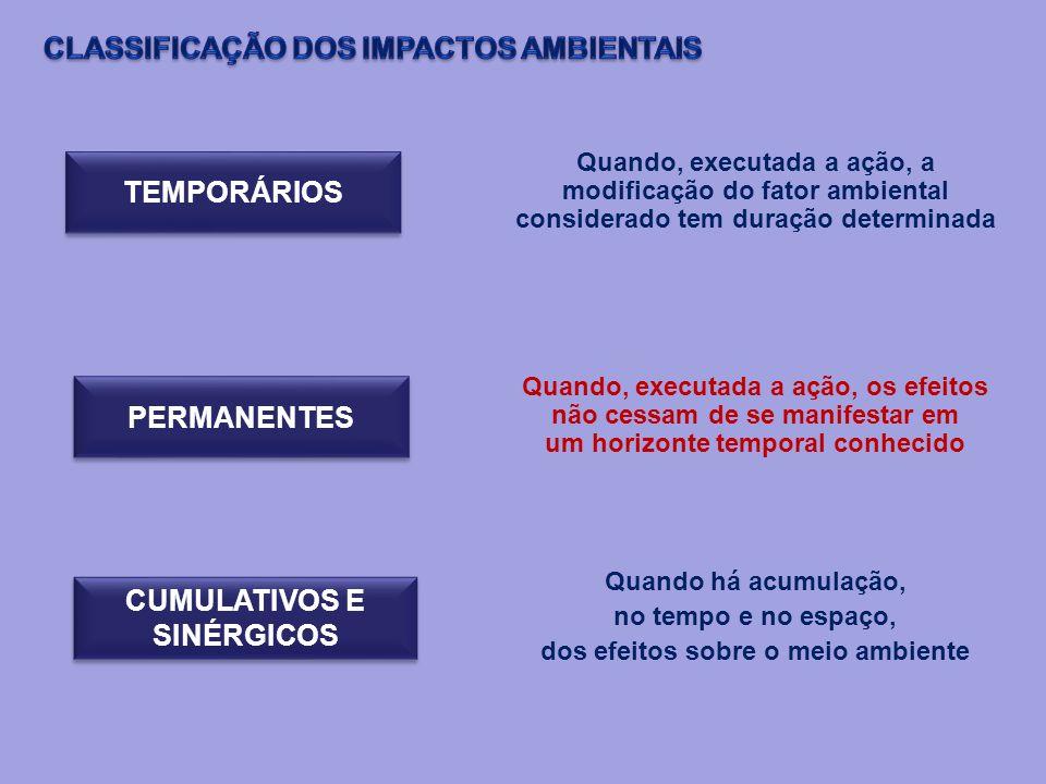 TEMPORÁRIOS PERMANENTES CUMULATIVOS E SINÉRGICOS