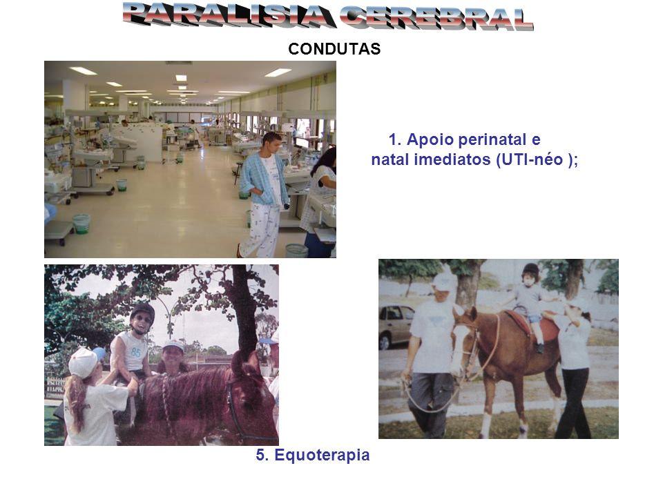 PARALISIA CEREBRAL CONDUTAS natal imediatos (UTI-néo ); 5. Equoterapia