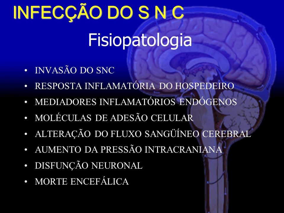 INFECÇÃO DO S N C Fisiopatologia INVASÃO DO SNC