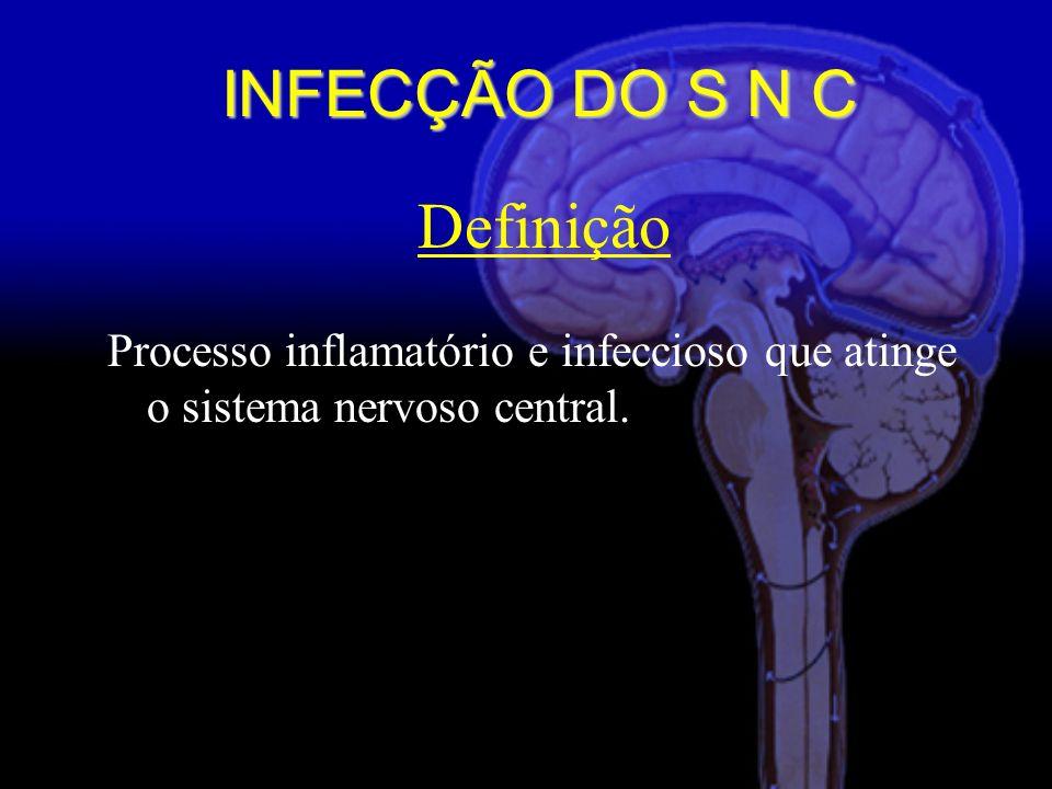 INFECÇÃO DO S N C Definição