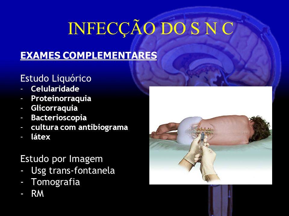 INFECÇÃO DO S N C EXAMES COMPLEMENTARES Estudo Liquórico