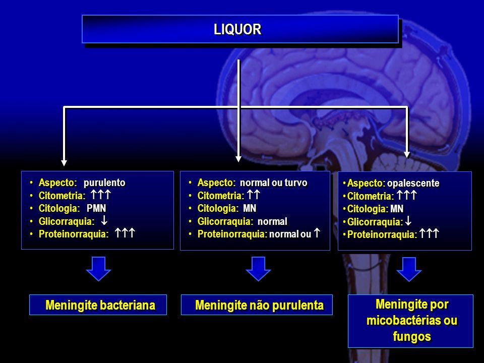 Meningite não purulenta Meningite por micobactérias ou fungos