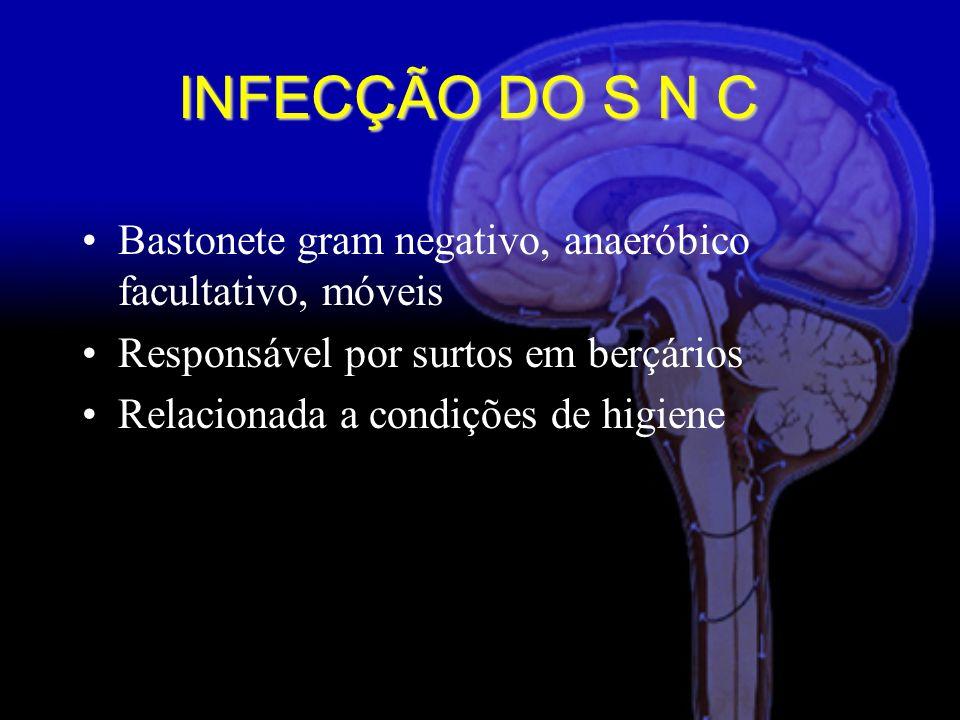 INFECÇÃO DO S N C Bastonete gram negativo, anaeróbico facultativo, móveis. Responsável por surtos em berçários.