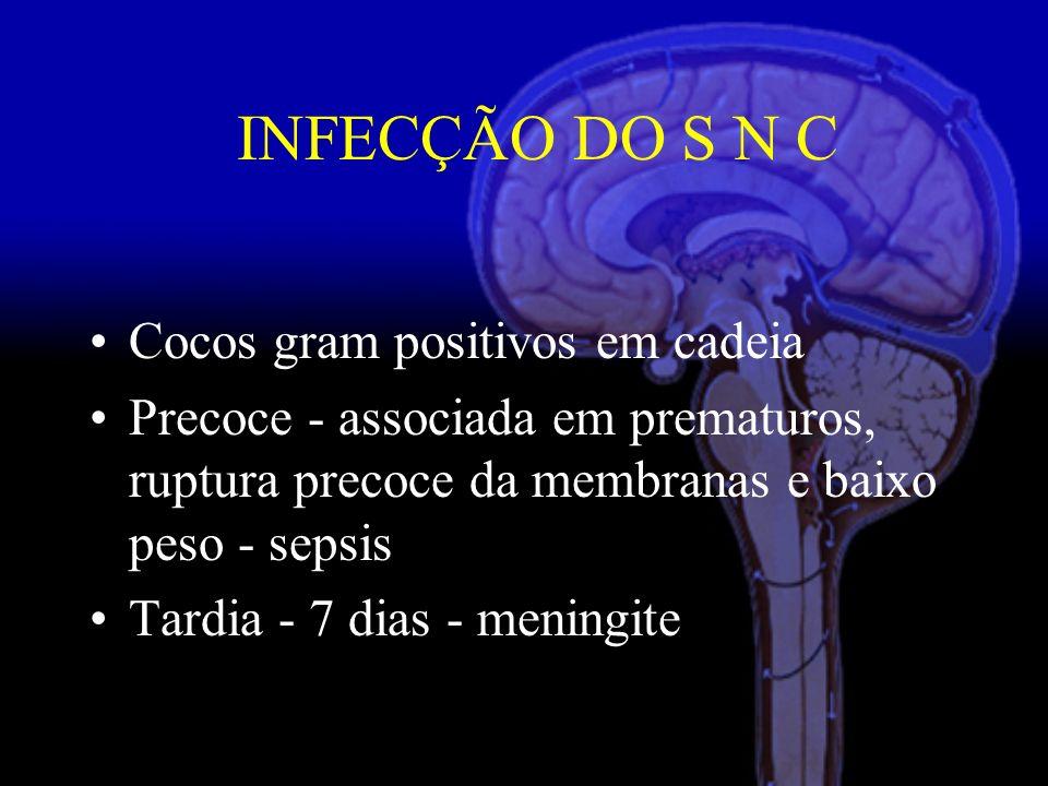 INFECÇÃO DO S N C Cocos gram positivos em cadeia
