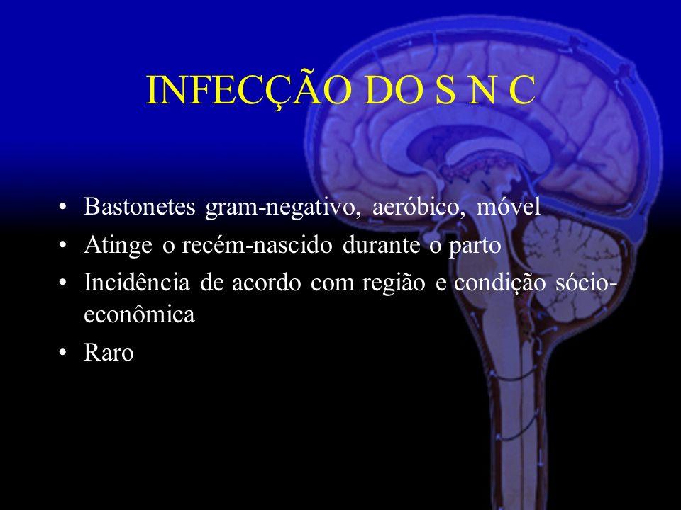 INFECÇÃO DO S N C Bastonetes gram-negativo, aeróbico, móvel