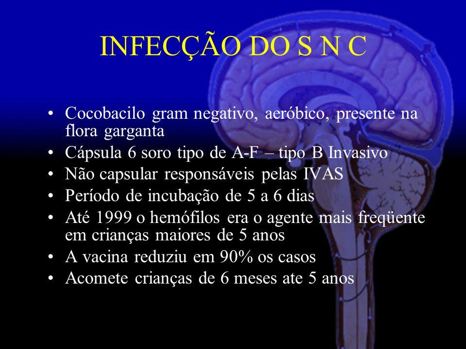 INFECÇÃO DO S N C Cocobacilo gram negativo, aeróbico, presente na flora garganta. Cápsula 6 soro tipo de A-F – tipo B Invasivo.