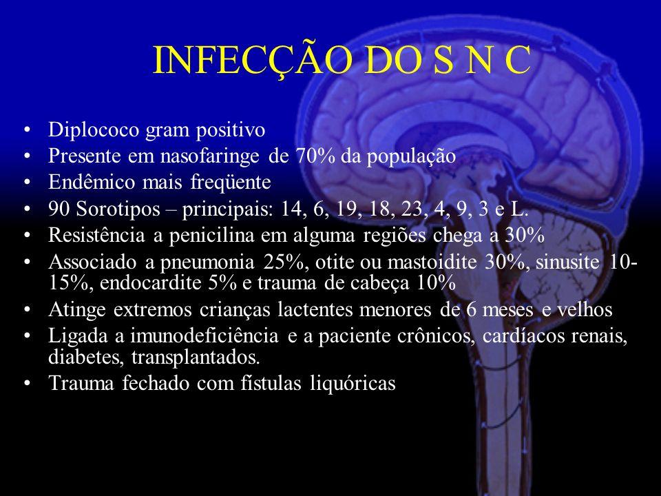 INFECÇÃO DO S N C Diplococo gram positivo
