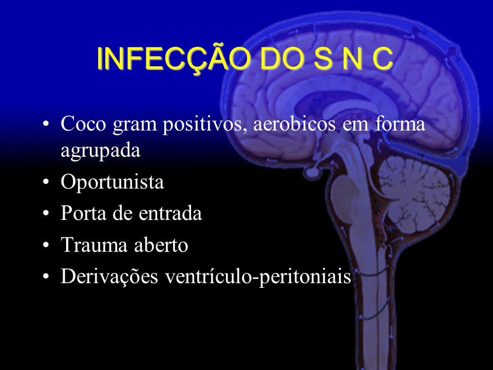 INFECÇÃO DO S N C Coco gram positivos, aerobicos em forma agrupada